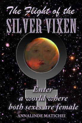 Front cover of The Flight of the Silver Vixen