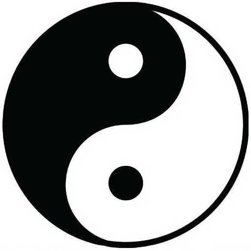 The yin-yang mandela